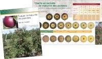 Évaluer la maturité des pommes / charte universelle de maturité des pommes